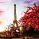 Paris (me avion), nisje me 13 Shkurt, 12 Mars, 19 Mars, 4 Ditë, €419